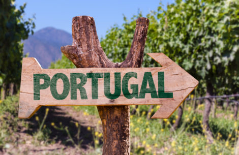 Portugal wooden sign with winery background