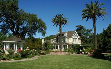 Sutter Home (Copy)